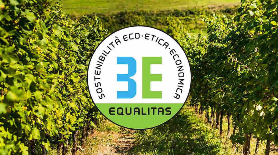 Schenk Italian Wineries certificata Equalitas