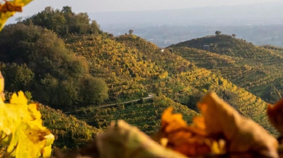 cammino unesco colline di conegliano e valdobbiadene